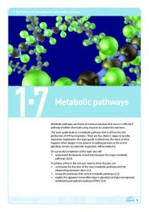 : Biochemistry of macromolecules and metabolic pathways