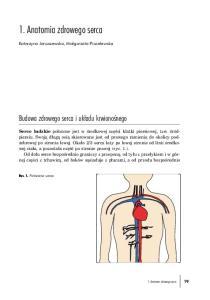 1. Anatomia zdrowego serca