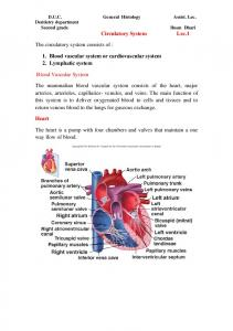 1. Blood vascular system or cardiovascular system 2. Lymphatic system