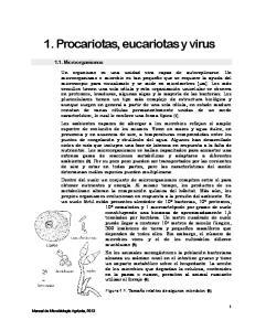 1. Procariotas, eucariotas y virus
