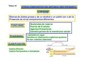 10 OTROS COMPUESTOS DEL METABOLISMO PRIMARIO LIPIDOS