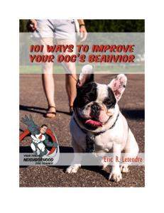 101 Ways To Improve Your Dog s Behavior