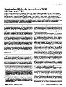 12688 JOURNAL OF BIOLOGICAL CHEMISTRY VOLUME 281 NUMBER 18 MAY 5, 2006