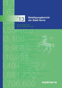 13 Beteiligungsbericht