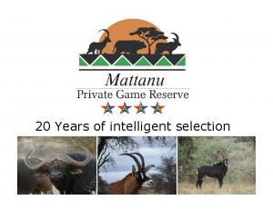 20 Years of intelligent selection
