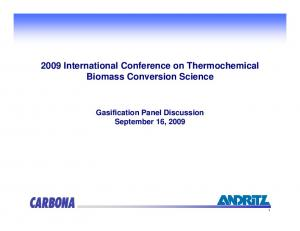2009 International Conference on Thermochemical Biomass Conversion Science. Gasification Panel Discussion September 16, 2009