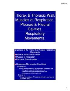 2010 Superior Thoracic Aperture Inferior Thoracic Aperture 3