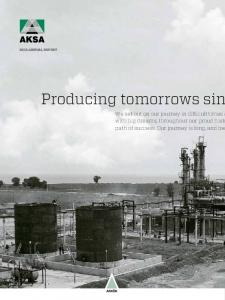 2012 ANNUAL REPORT. Producing tomorrows sin