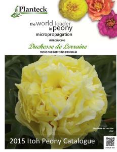 2015 Itoh Peony Catalogue