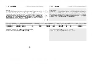 2.1.6 C1-Phasen C1 Phases