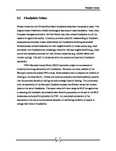 2.3 Floodplain Values