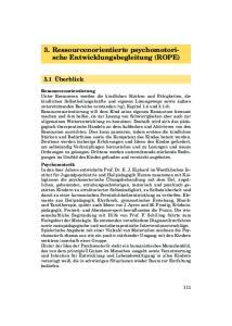 3. Ressourcenorientierte psychomotorische Entwicklungsbegleitung (ROPE)