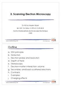 3. Scanning Electron Microscopy