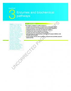 3Enzymes and biochemical