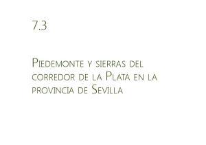7.3. Piedemonte y sierras del corredor de la Plata en la provincia de Sevilla