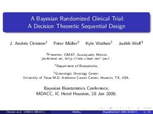 A Bayesian Randomized Clinical Trial: A Decision Theoretic Sequential Design