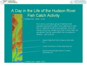 A Day in the Life of the Hudson River Fish Catch Activity