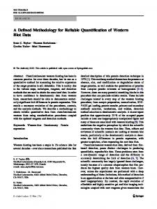 A Defined Methodology for Reliable Quantification of Western Blot Data