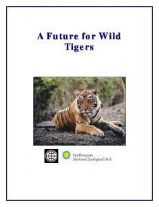 A Future for Wild Tigers
