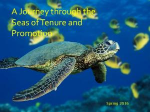 A Journey through the Seas of Tenure and Promotion