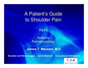 A Patient s Guide to Shoulder Pain