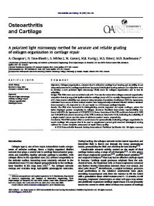 A polarized light microscopy method for accurate and reliable grading of collagen organization in cartilage repair