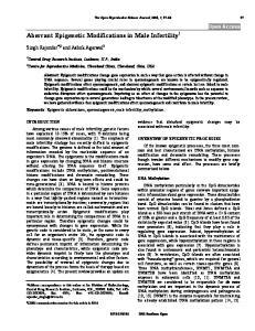 Aberrant Epigenetic Modifications in Male Infertility