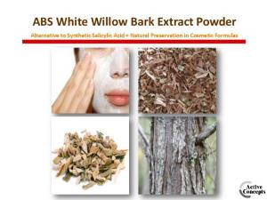 ABS White Willow Bark Extract Powder. Alternative to Synthetic Salicylic Acid + Natural Preservation in Cosmetic Formulas