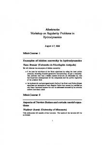 Abstracts Workshop on Regularity Problems in Hydrodynamics