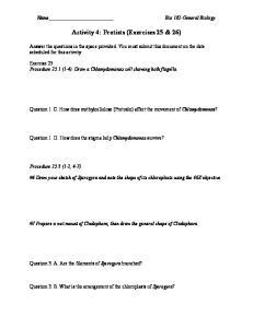 Activity 4: Protists (Exercises 25 & 26)