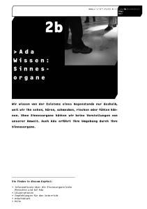 >Ada Wissen: Sie finden in diesem Kapitel: