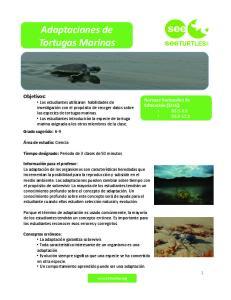 Adaptaciones de Tortugas Marinas