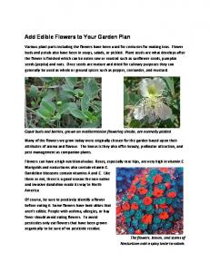 Add Edible Flowers to Your Garden Plan