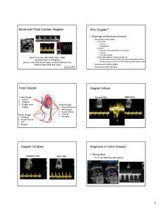 Advanced Fetal Cardiac Doppler