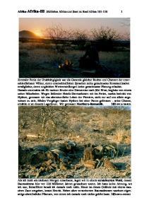 Afrika-Afrika-III Südliches Afrika und Start zu Real Africa