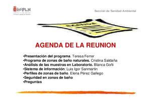 AGENDA DE LA REUNION