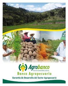 Agrobanco y el crecimiento del sector Agropecuario