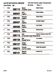 AKC 2013 National Agility Championship Jump Height: 08. Mattie Yorkshire Terrier. Jazz Papillon. Whimsy Papillon. Riot Papillon