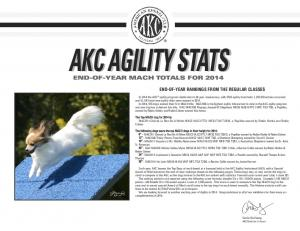AKC AGILITY STATS. The Top MACH dog for 2014 is: