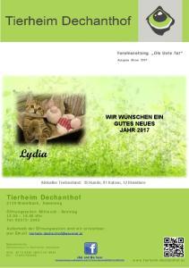 Aktueller Tierbestand: 35 Hunde, 91 Katzen, 12 Kleintiere