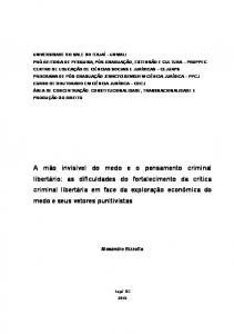 Alexandre Bizzotto. Orientador: Professor Doutor Alexandre Morais da Rosa
