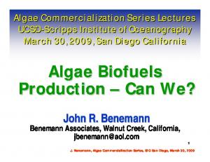 Algae Biofuels Production Can We?