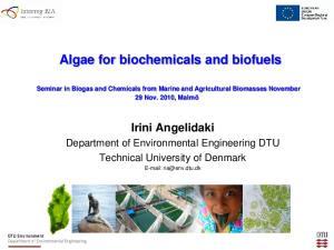 Algae for biochemicals and biofuels