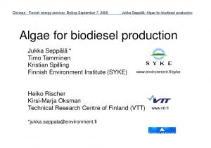 Algae for biodiesel production