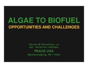 ALGAE TO BIOFUEL OPPORTUNITIES AND CHALLENGES