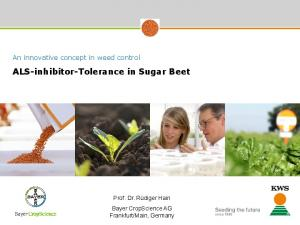 ALS-inhibitor-Tolerance in Sugar Beet