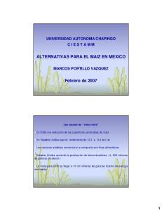 ALTERNATIVAS PARA EL MAIZ EN MEXICO. Febrero de 2007