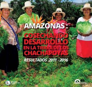 AMAZONAS : COSECHANDO DESARROLLO EN LA TIERRA DE LOS CHACHAPOYAS RESULTADOS