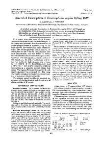 Amended Description of Haemophilus segnis Kilian 1977