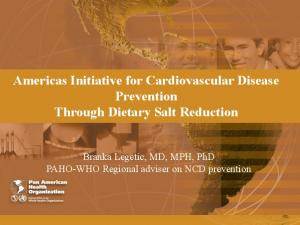 Americas Initiative for Cardiovascular Disease Prevention Through Dietary Salt Reduction